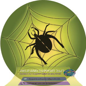quick-cash-system-spider-web