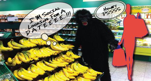 social-monkee-review-backlinks-that-google-loves-bananas