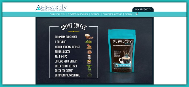 elevate energy patch reviews