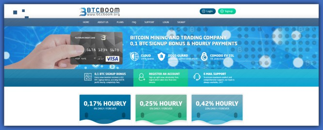 BTCBoom.org – Bitcoin Delirium with Hourly ROI Promises