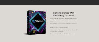 vidsting video marketing software