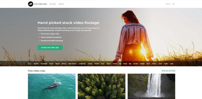 mazwai - free stock videos