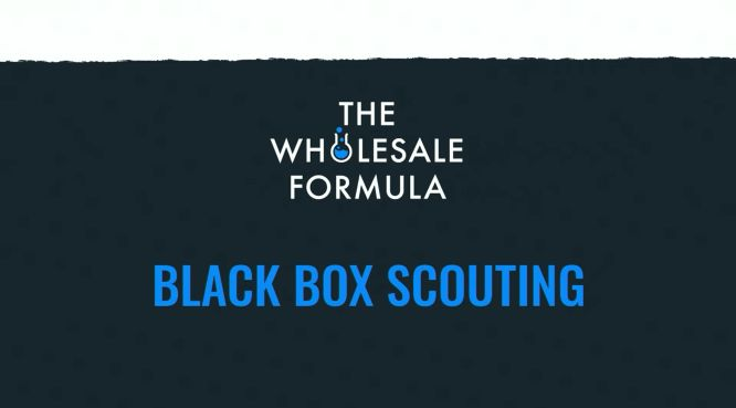 the wholesale formula - black box scouting