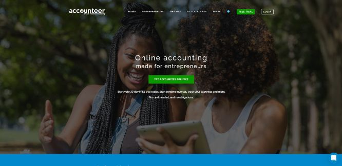 accounteer - business accounting solutions