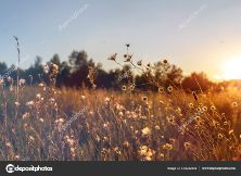 depositphotos_433232994-stock-photo-abstract-warm-landscape-of-dry