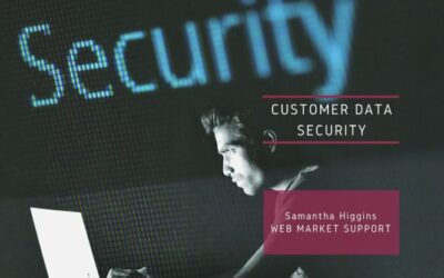 Best Ways To Secure Your Customers' Data