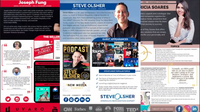 steve olsher audio domination review - media one sheet examples
