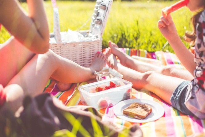 picjumbo-picnic free stock photos